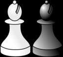 Black And White Bishop R