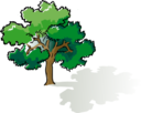 Colored Oak Tree