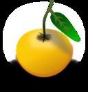 Orange Laranja