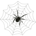 download Spider Web clipart image with 45 hue color