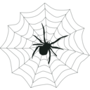 download Spider Web clipart image with 135 hue color