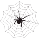 download Spider Web clipart image with 315 hue color