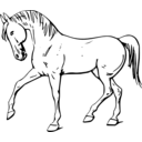 download Walking Horse Outline clipart image with 225 hue color