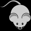 Simple Cartoon Mouse