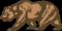 Flag Of California Bear