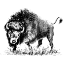 download Buffalo clipart image with 225 hue color