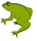 Remix Frog