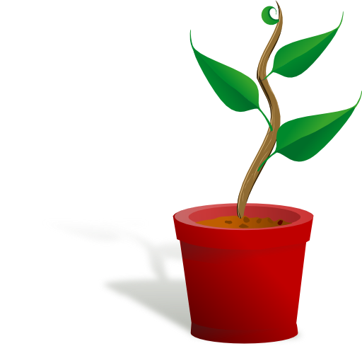 Grow Clipart Plant growing clipart