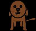 Little Dog