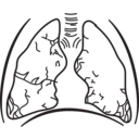 58294main The Brain In Space Page 157 Lungs
