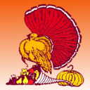 Thanksgiving Turkey And Harvest With Orange Background