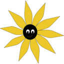 Yellow Sun Flower