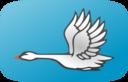 Flying Swan 2