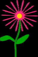 Whimsical Pink Flower