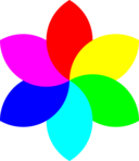 6 Football Petal Flower