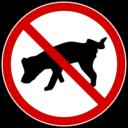 Dog No Peeing