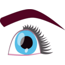 download Eye clipart image with 315 hue color