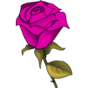download Red Rose clipart image with 315 hue color