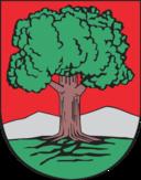 Walbrzych Coat Of Arms