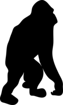Orangutan Contour