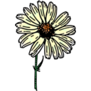download Colored Daisy 2 clipart image with 45 hue color