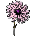 download Colored Daisy 2 clipart image with 315 hue color