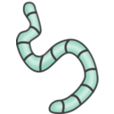 download Earthworms clipart image with 135 hue color