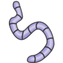download Earthworms clipart image with 225 hue color