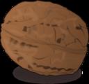 Shaded Walnut