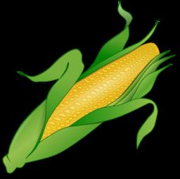 Corn Clipart | i2Clipart - Royalty Free Public Domain Clipart - photo#20