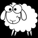 Eid Sheep