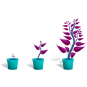 download Green Plant In Its Pot In Three Different Phases Of Growth clipart image with 180 hue color
