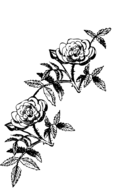 Rose Decoration