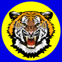 Tiger Yellow On Blue
