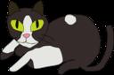 Purr Cat