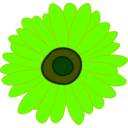 download Sunflower clipart image with 45 hue color