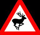 Roadsign Bambi