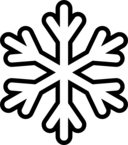 Snowflake Monochrome