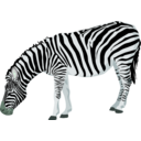 download Zebra clipart image with 135 hue color