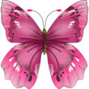 download Butterfly clipart image with 45 hue color