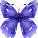 download Butterfly clipart image with 315 hue color