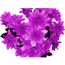 download Red Flowers clipart image with 315 hue color