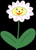 Daisy Simle