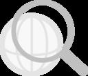Web Search Grayscale