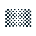 Chequered Flag Abstract Icon 2