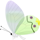 download Transp Butterfly clipart image with 45 hue color