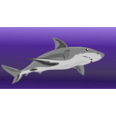 download Shark clipart image with 45 hue color