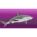 download Shark clipart image with 90 hue color