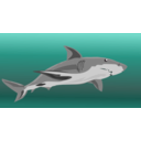 download Shark clipart image with 315 hue color
