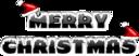 Merry Christmas 2010 2